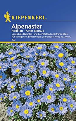 Alpenastern Hellbau