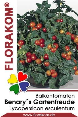 Cherrytomaten Benarys Gartenfreude