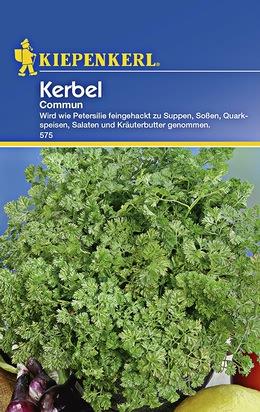 Kerbel Commun