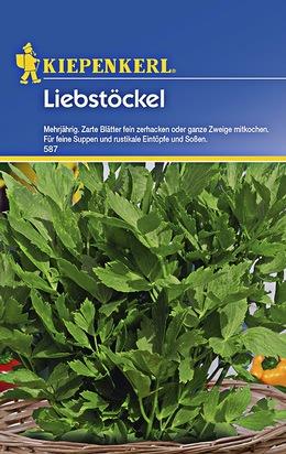 Liebstock - Maggikraut Samen