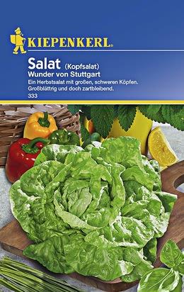 Kopfsalat Wunder von Stuttgart