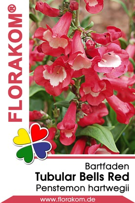 Bartfaden Tubular Bells Red Samen