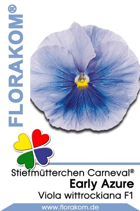 Stiefmütterchen Carneval® Early Azure