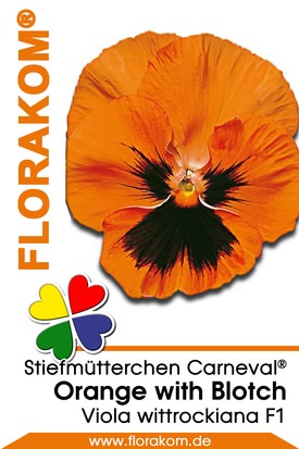 Stiefmütterchen Carneval® Early Orange with Blotch