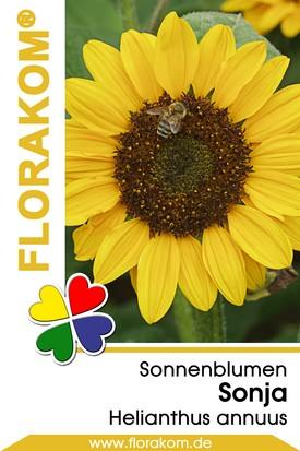 Sonnenblumen Sonja®