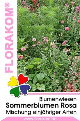 Blumenmischung Sommerblumen Rosa