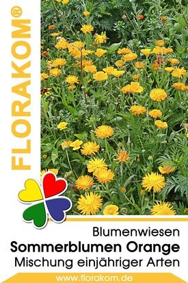 Blumenmischung Sommerblumen Orange