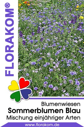 Blumenmischung Sommerblumen Blau