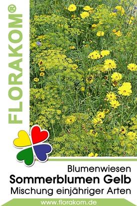 Blumenmischung Sommerblumen Gelb