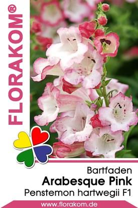 Bartfaden Arabesque Pink