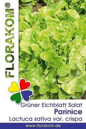 Grüner Parinice Eichblattsalat Samen