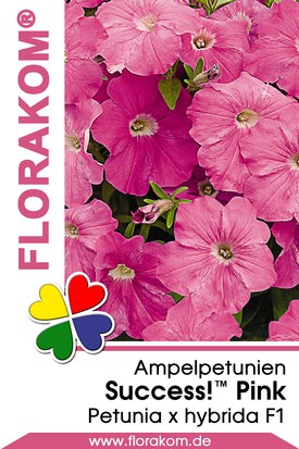 Ampelpetunien SUCCESS!™ Pink