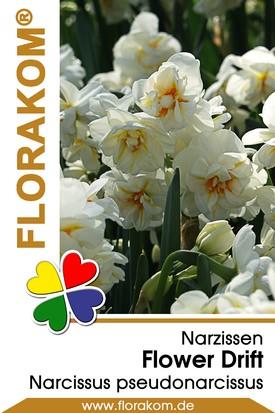 Narzissen Gefüllte Flower Drift