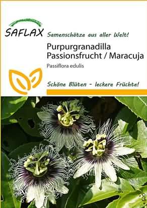 Purpurgranadilla Passionsblume Samen