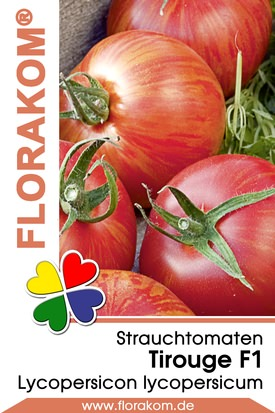 Strauchtomaten Tirouge