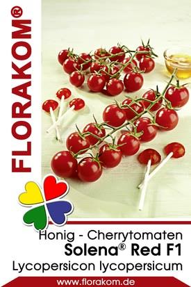 Honig - Cherrytomaten Solena® Red