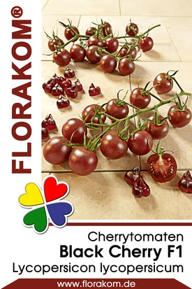 Cherrytomaten Black Cherry