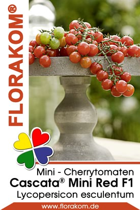 Mini - Cherrytomaten Cascata® Mini Red