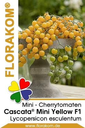 Mini - Cherrytomaten Cascata® Mini Yellow