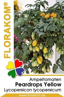 Ampeltomaten Peardrops Yellow