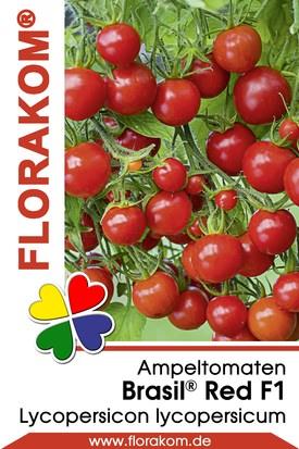 Ampeltomaten Brasil® Red
