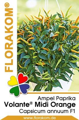 Ampelpaprika Volante® Mild Orange Samen