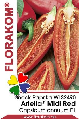Snackpaprika Ariella® Midi Red