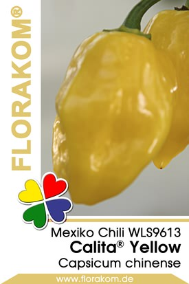 Mexikochili Calita® Yellow