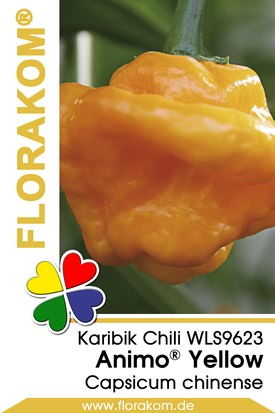 Karibikchili Animo® Yellow