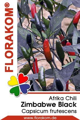 Afrikachili Zimbabwe Black