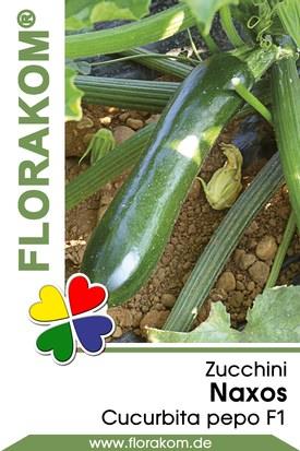 Zucchini Naxos