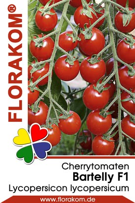 Cherrytomaten Bartelly