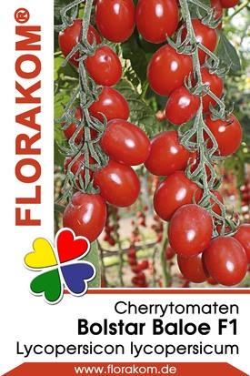 Cherrytomaten Bolstar Baloe
