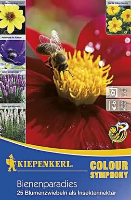 Bienenparadies Mischung Knollen