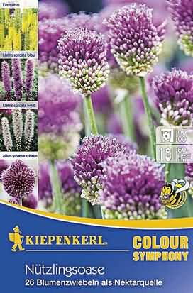 Nützlingsoase Blumenzwiebelmischung Knollen & Zwiebeln
