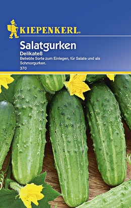 Salatgurken Delikateß