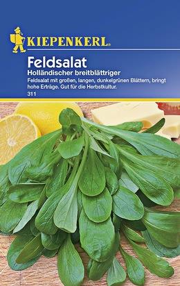 Feldsalat Holländischer Breitblättriger