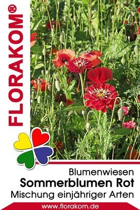 Blumenmischung Sommerblumen Rot