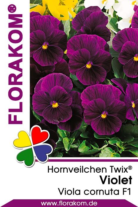 hornveilchensamen twix violet florakom. Black Bedroom Furniture Sets. Home Design Ideas