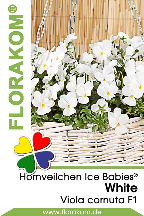 hornveilchensamen ice babies white florakom. Black Bedroom Furniture Sets. Home Design Ideas