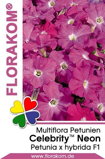 multiflora petuniensamen celebrity neon florakom. Black Bedroom Furniture Sets. Home Design Ideas