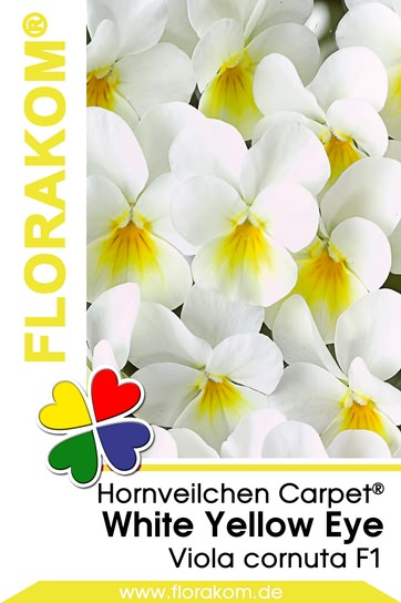 hornveilchensamen carpet white yellow eye florakom. Black Bedroom Furniture Sets. Home Design Ideas