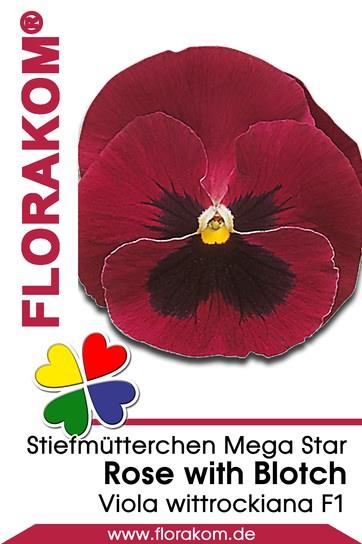 stiefm tterchensamen mega star rose with blotch florakom. Black Bedroom Furniture Sets. Home Design Ideas