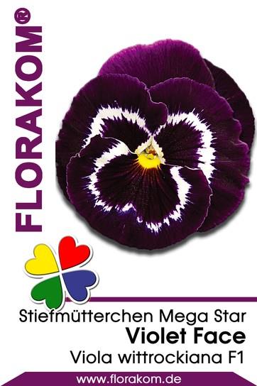 stiefm tterchensamen mega star violet face florakom. Black Bedroom Furniture Sets. Home Design Ideas