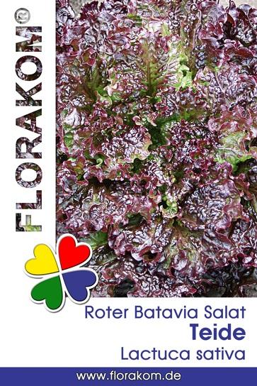 <hr>Bataviasalat Teide <hr>Samen<hr>