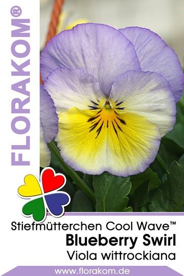 Ampelstiefmütterchen Cool Wave™ Blueberry Swirl