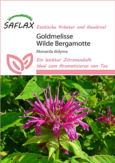 <hr>Goldmelisse Wilde Bergamotte <hr>Samen<hr>