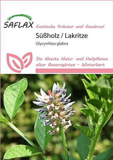 <hr>Süßholz Lakritze <hr>Samen<hr>
