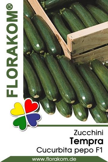 Zucchini Tempra