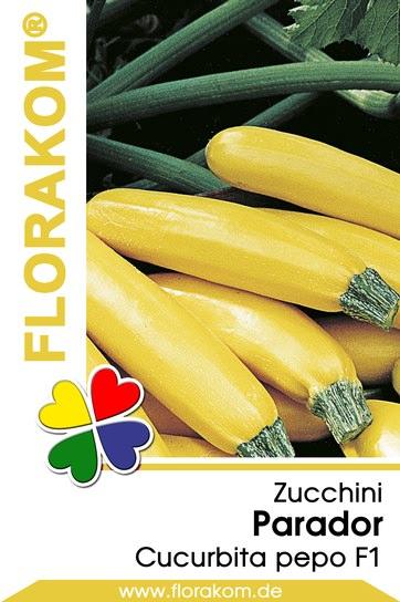 Zucchini Parador